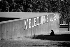 Melbourne Museum (Shane_Henderson) Tags: street city summer children carlton au fitzroy australia victoria fujifilm melbournemuseum xseries eastmelbourne fujinonlensxf1855mmf284rlmois fujifilmxe2