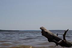 IMG_1871 (GabrielBlaisD) Tags: new summer ontario canada liskeard