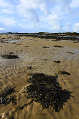 Rhosneigr sands (nessie thompson) Tags: blue sky seaweed beach water clouds sand blu cluds