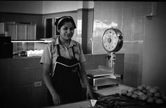 "(""Doberman"") Tags: city copyright film de mexico sebastian g  ciudad lopez wwwsebastianlopeznet"