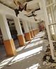 Salle à manger - Un penchant pour le désordre (B.RANZA) Tags: trace histoire waste sanatorium hopital empreinte exil cmc patrimoine urbex disparition abandonedplace mémoire friche centremédicochirurgical
