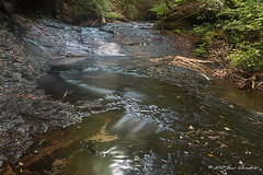 Sipsey Wilderness Cascade
