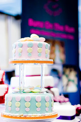 Bunz on the Run, Six Ways Wedding Fayre, March 2012 (ShaunHillPhotography) Tags: wedding red portrait net love cakes rose cake club hearts photography photo photographer heart sweet rugby hill silk run sweets ribbon shaun bunz fayre worcester silky