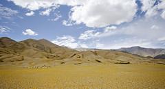 Shepherd (Prabhu B Doss) Tags: travel landscape nikon shepherd border roads loma tsaka ladakh indochina pangong ladakhi prabhub spangmik nyoma prabhubdoss d7000 zerommphotography 0mmphotography