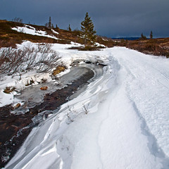 Ved Brennbekken (Krogen) Tags: nature norway landscape norge natur norwegen april noruega scandinavia krogen landskap noorwegen noreg skandinavia oppland synnfjellet nordreland olympusep2