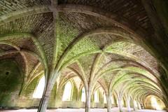 Fountains Abbey (4) (Tyne Decca) Tags: york uk abbey museum canon star evening yorkshire royal railway national mallard fountains 2012 ripon studley 40d