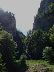 Zarnesti Gorge (Ailie) Tags: romania transylvania zarnestigorge