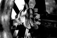 Fordson Model F Tractor Front Wheel - Nikon FM - Nikkor-SC 55mm F/1.2 - Efke 25 (divewizard) Tags: california old blackandwhite bw white tractor black detail slr blancoynegro film blanco wheel analog 35mm blackwhite analgica nikon rust noir noiretblanc bokeh decay negro rusty right front 55mm 25 rusting fm blanc dilapidated f12 fordson wideopen shallowdof pelcula efke mendocinocounty nikonfm efke25 modelf schwarzundweiss fordsontractor blackwhitephotos oldstageroad y44 nikkorsc ncps chrisgrossman 55mmf12sc northcoastphotographicservices nikkorsc55mmf12 nikkorsc nikkorsc55mmf12 iversenroad