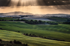 Landscape, Italy, light from the sky (Gianluca, very busy!) Tags: park new trip travel blue trees light red summer vacation sky italy orange holiday colour tree green art home nature colors beautiful yellow rural canon wonderful landscape geotagged photography landscapes photo dance interestingness spring perfect colorful europa europe italia waves image quality hill bluesky natura paisaje explore campagna land popular incredible landschaft colori tranquil breathtaking lanscape marche jesi collina ancona rayoflight contry manwork manuallens agricolture overthelight natureholiday wavesofcolors 5dmarkii alternatelens