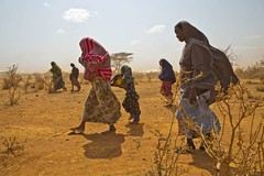 UNHCR News Story: Somali refugee prepares for the long haul in Ethiopia (UNHCR) Tags: africa news women refugees border hijab tent relief help aid drought violence somali ethiopia shelter information protection assistance unhcr famine insecurity hornofafrica wfp newsstory refugeecamp mosquitonets khimar berdale sleepingmats bayregion somalirefugees kitchensets unrefugeeagency unitednationshighcommissionerforrefugees forciblydisplaced forcedrecruitment dolloado dolloadotransitcentre buraminocamp administrationforrefugeeandreturneeaffairs