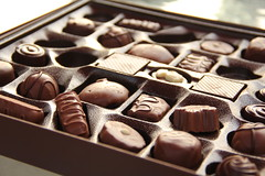 Pick Me (#1391) (protophotogsl) Tags: chocolate milkchocolate darkchocolate boxofchocolates laurasecordchocolates