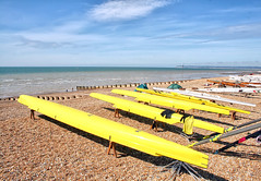 Ready for the regatta (larigan.) Tags: summer england sunshine regatta recreation eastsussex englishchannel beachyhead activities seasideresort inarow lamanche breakwaters bexhillonsea rowingboats larigan phamilton unrecognisablepeople gettyimageswants gettywants windshelters capturingenglishsummer