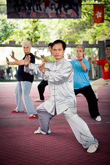 "taijiquan-11 • <a style=""font-size:0.8em;"" href=""http://www.flickr.com/photos/76454937@N07/7636338228/"" target=""_blank"">View on Flickr</a>"