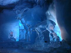 DSC00594 (DeeGe7) Tags: abstract ice switzerland klein frost suisse frosty glacier cave zermatt matterhorn icy grotte glace givre abstrait glacé lumire givré petitcervin glaceglace