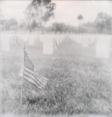 Flag 9 - Lest We Forget (tobysx70) Tags: the impossible project tip polaroid sx70 sonar px100uv px100 px 100 uv silver shade impossaroid black white bw sepia roidweek roid week summer august 2012 flag los angeles national cemetery sepulveda blvd boulevard la california ca us usa stars stripes old glory misty military graves stones flags memorial day lest we forget vanishing point palm tree toby hancock photography