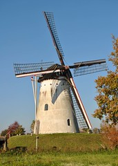 De Volharding / Zeddam (tokek belanda (very busy)) Tags: holland mill netherlands windmill de nederland molen achterhoek windmolen gelderland montferland 1891 volharding zeddam bergh korenmolen beltmolen