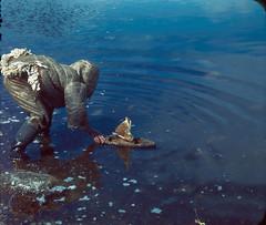 Inuit child sailing his toy boat with caribou skin sails / Un enfant inuit fait voguer son bateau avec des voiles en peau de caribou (BiblioArchives / LibraryArchives) Tags: canada toys boat sailing child lac games inuit northwestterritories bateau caribou enfant arviat nunavut bac jouets jeux libraryandarchivescanada eskimopoint bibliothqueetarchivescanada territoiresdunordouest skinsails voilesenpeau faisantnaviguer donaldbenjaminmarsh