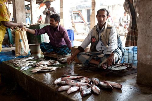 A small fish market in Khulna, Bangladesh. Photo by Mike Lusmore/Duckrabbit, 2012.