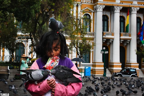 """Who is in control?"" - Plaza Murillo - La Paz -  Bolivia"