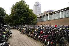 This is Amsterdam (Sara Serra) Tags: holland ecology amsterdam bicicleta bicicle eco olanda bicicletta ecologia ecologica
