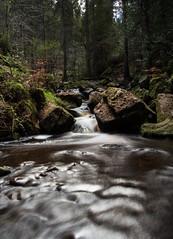 Filter (parasomnist) Tags: park nature water river waterfall rocks stream motionblur rivelin rivelindams wyomingbrook wyomingnaturereserve
