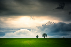 Sorry for the lack of comments of late, really been under it, hope to resume this week end....... (Eric Goncalves) Tags: trees light sunset tree green nature field clouds countryside spring gloucestershire nikond810 nikon24120f14vr