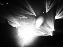 Samedi Soir @ Rock'N Solex 2016 - Bomber pour www.alter1fo (21) (alter1fo) Tags: festival rock boston club campus cheval one para n cc busy cotton claw 49 insa p bun rennes beaulieu tudiants solex tudiant beaulieux