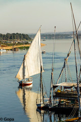 Early morning Felucca ride (gambat) Tags: river boats nile aswan felucca upperegypt