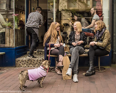 20160514-20160514-_5140294-Edit (dens_lens) Tags: candid street streetphotography brighton england