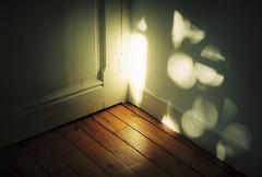 Halfway there. (Leonor F) Tags: light sun sunlight reflection film lines analog vintage 50mm daylight shine floor kodak bokeh geometry poetic symmetry analogue portra yashica komorebi filmphotography kodakportra filmisnotdead