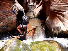 Kanarra Creek Descent (anamericanoutlander) Tags: travel creek utah waterfall crazy hiking rad canyon hike wanderlust adventure backpack wander kanarra