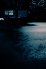 invitation from devil (N.sino) Tags: shadow midnight    xpro1 xf35mmf14r