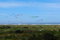 2016 Ocean Shores Festival of Colors (Tony Cyphert) Tags: ocean sky beach colorful kites oceanshores festivalofcolors