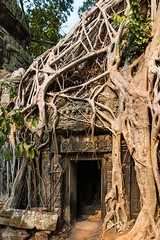 Cambodia (Strby Patric) Tags: suryavarman kambodscha asia camboya reisen weltkulturerbe angkorwat worldheritage cambodia d800 cambodge tempel khmer unesco kambodja asien cambogia kambodza nikon