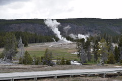 Yellowstone National Park (kevonzone) Tags: lake snow rain forest train frozen waterfall pond buffalo nikon bears yellowstone wyoming geyser bison mountians d3300