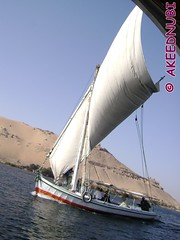 DSC06796 (AKEEDNUBI) Tags: