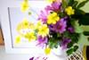 Pinkrain design: you are my sunshine! (Artoleria) Tags: spring homedecor stikers iloveyoursmile ikeaframe spontaneousflowers artoleria pinkraindesign