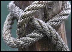Halvstikk (Stenersenfoto) Tags: sea texture boat aperture nikon close rope knot