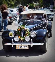 Old cars (Eleanna Kounoupa) Tags: flowers mayday oldcars  kifissia varibobi    filpa