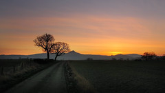 Road to the top. (paul downing) Tags: winter sunrise canon pdp roseberrytopping pd1001 sx10is pauldowning