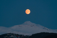 Orange moon over Troms mountains (Per Ivar Somby) Tags: moon harvestmoon mne troms fullmne middagstind malangsfjellene