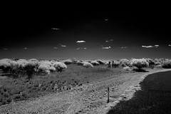 Turn of to Minilya-Exmouth Road (huskyte77) Tags: road trip travel november sky bw nature weather canon landscape ir eos bush parkinglot flickr track day view desert outdoor oz australia clear infrared botanic 20mm gps aussie canoneos300d westernaustralia 2011 quobba northwestcoastalhighway