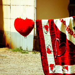 I hang my heart out to dry