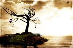 Mysterious Dream (Chloe Seljan) Tags: sea mer tree mysterious abre rve mystre mysteriousdream lenabemanna dreamvoyage
