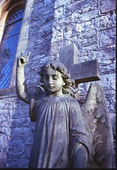 Canon AE-1 (Silver Camera) - Beautiful Angel (with missing finger) - Holy Trinity Church, Cleeve Somerset (Gareth Wonfor (TempusVolat)) Tags: statue carving stone angel face monument finger canon ae1 film 35mm scan scanner scanned epson perfection v200 gareth mrmorodo tempusvolat tempus volat cemetery grave burial epsonscanner flickr getty interesting image picture gw scanning scans photoscanner epsonperfection geotagged garethwonfor mr morodo analog lomo lomography experiment filmphotography 35mmphotography analogphotography wonfor