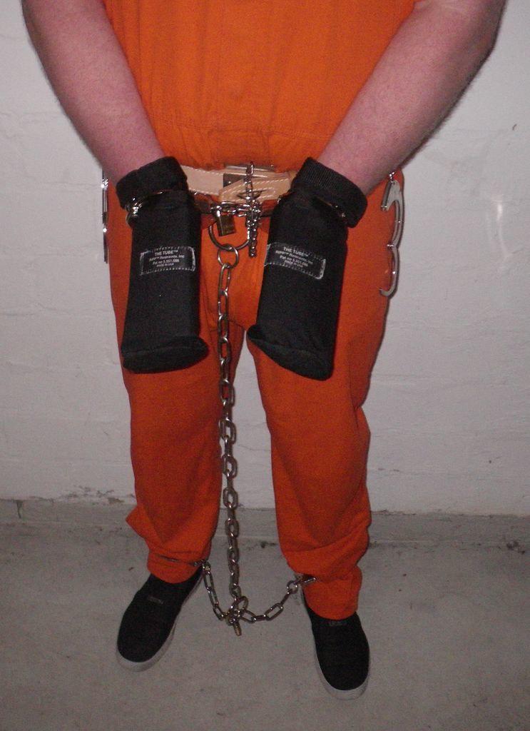 Prison research paper