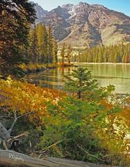 String Lake (P. Oglesby) Tags: autumn mountains landscapes scenics grandtetonnationalpark thehighlander godlovesyou stringlake