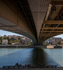 The Three Amigos (Nikola Vukievi) Tags: bridge nikon bridges most belgrade beograd sava 18105 kalemegdan reka reke d90 kej mostovi 18105mm brankovmost