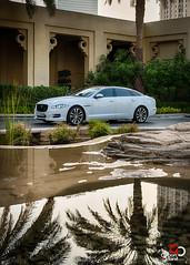 Jaguar XJL-8.jpg (CarbonOctane) Tags: white dubai shoot uae review july jaguar 2012 xj carbonoctanecom 2012jaguarxjl