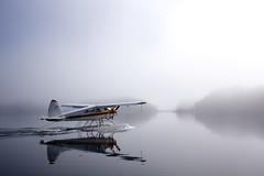 165/365(+1) (Luca Rossini) Tags: blue sky white lake water fog alaska plane project landscape mirror flying woods sony float takeoff kodiak nex7 e24mmf18za 3651daysofnex7 366nexblogspotcom